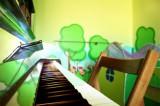 Gallery asilo nido (6/19)